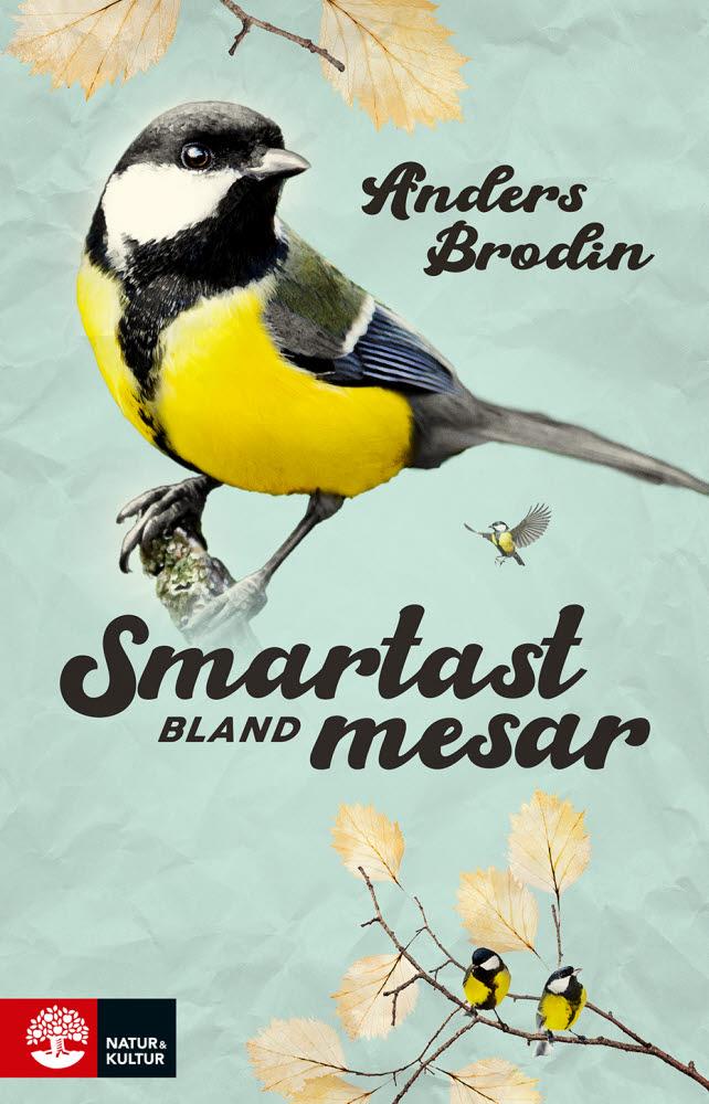 Smartast bland mesar av Anders Brodin jpg