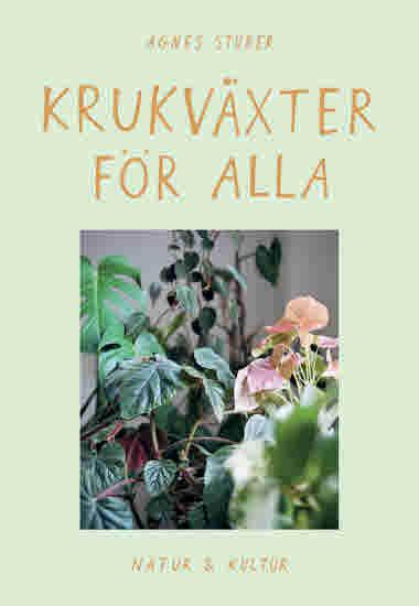Krukväxter för alla av Agnes Stuber jpg