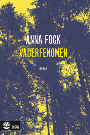 Väderfenomen av Anna Fock