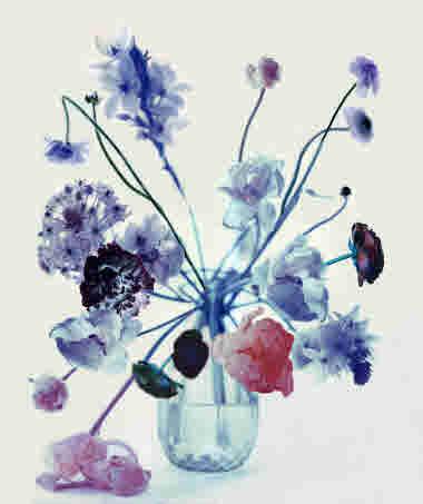 Att skapa naturlig parfym, ur boken Den parfymerade trädgården av Elin Unnes.