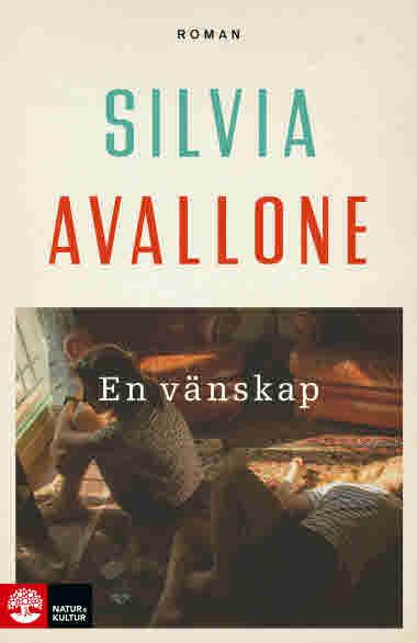En vänskap av Silvia Avallone